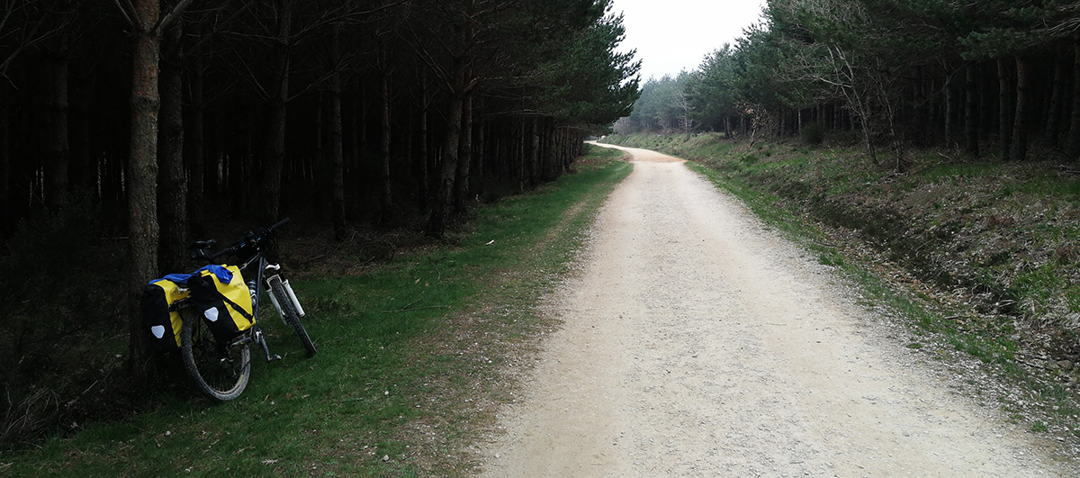 Camino de Santiago en bici, Etapa 8: Villafranca Montes de Oca – Boadilla del Camino