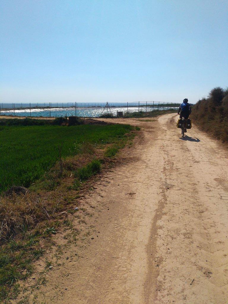 Camino de Santiago hacia Algerri